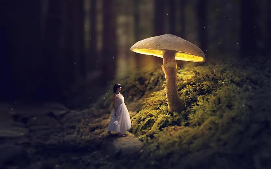 PS教程!教你合成发光的蘑菇童话风格场景(含素材下载)