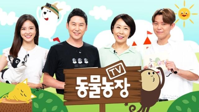 20个韩国电视节目Banner设计!