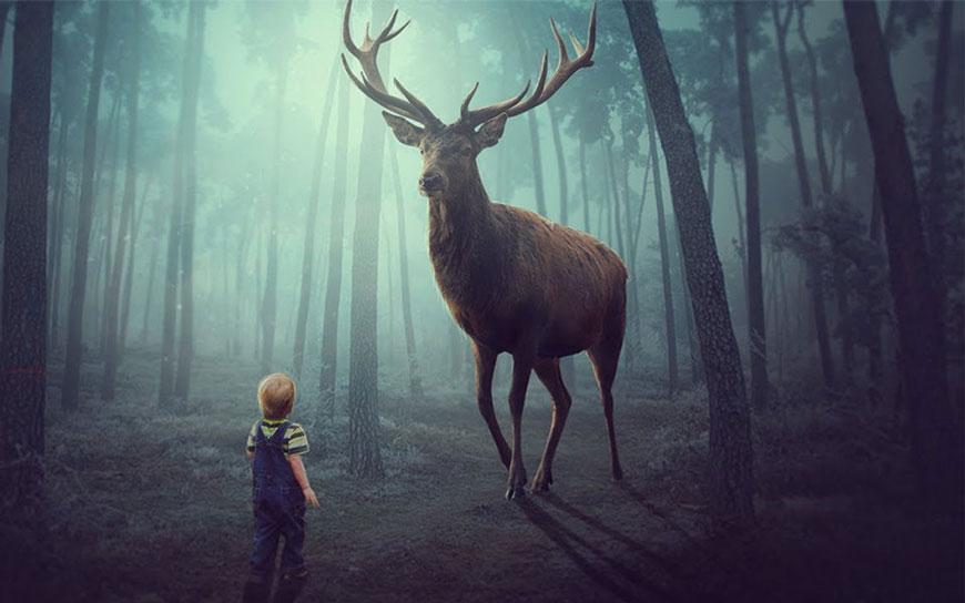 PS教程!教你合成梦幻丛林中小男孩和麋鹿场景(含素材下载)