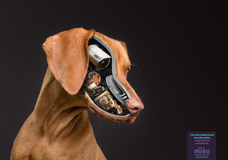 动物保护人人有责!18款Misu海报设计