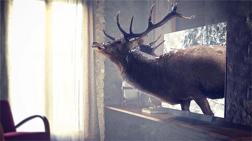 PS合成!跑出电视机的小鹿