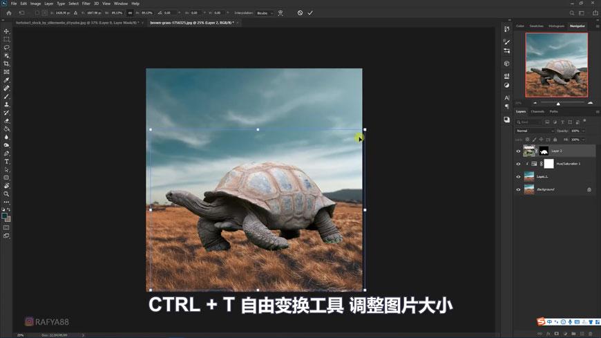 PS合成!乌龟背上的童话世界!(含素材图片下载)