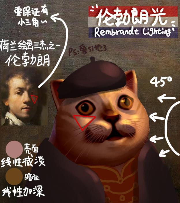 奇怪且有用的知识!8种爆火的mur猫光影教学