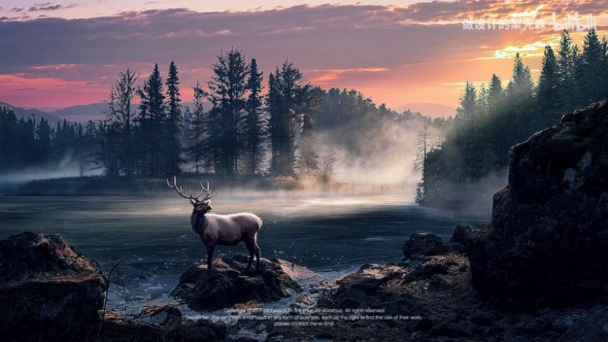 PS教程!森林里的斑鹿梦幻场景合成