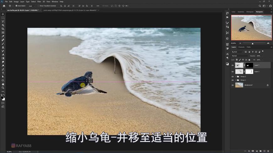 PS教程!海龟回家浪漫场景合成!(含素材下载)