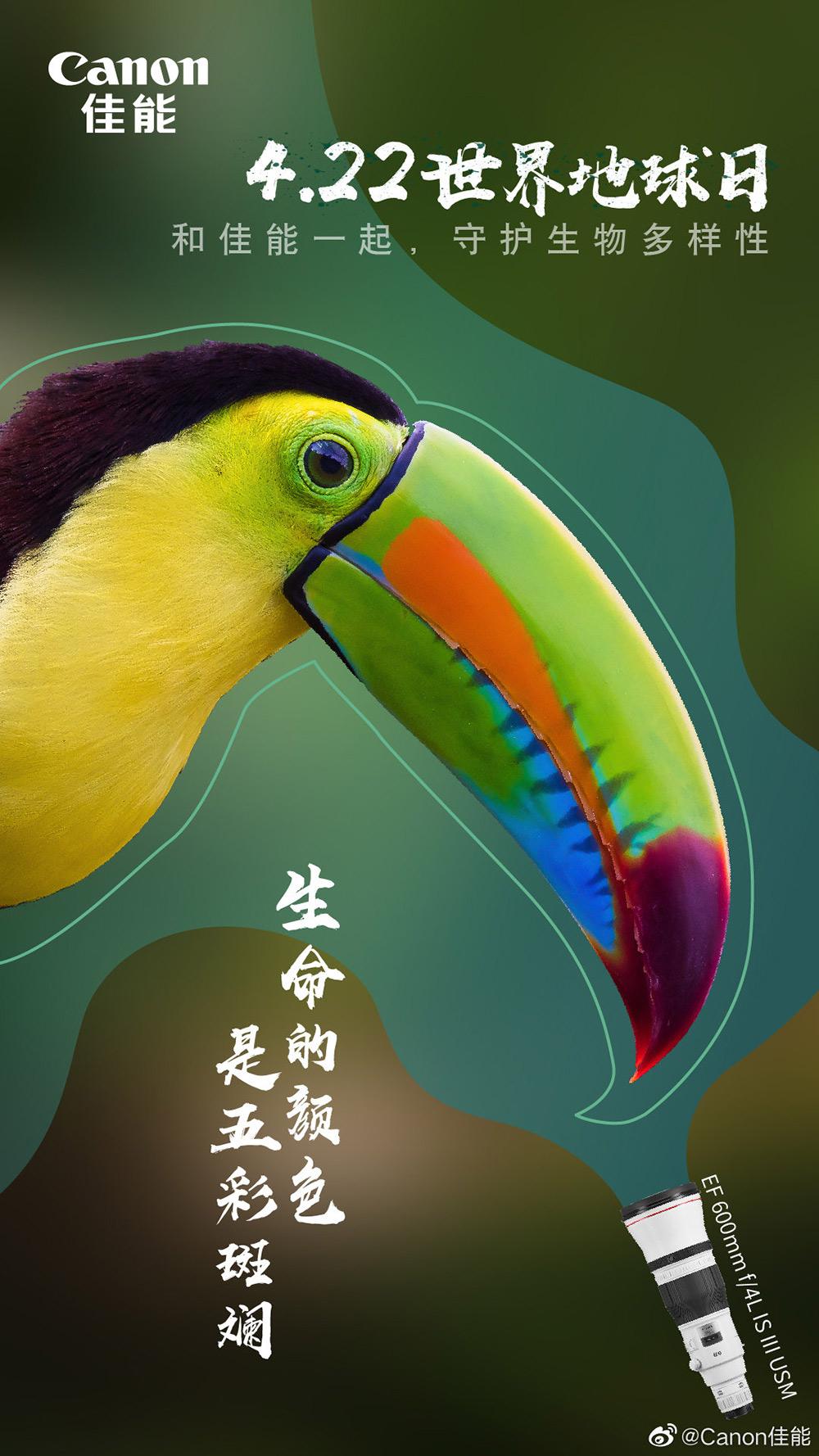 爱护家园!各大品牌「世界地球日」海报设计