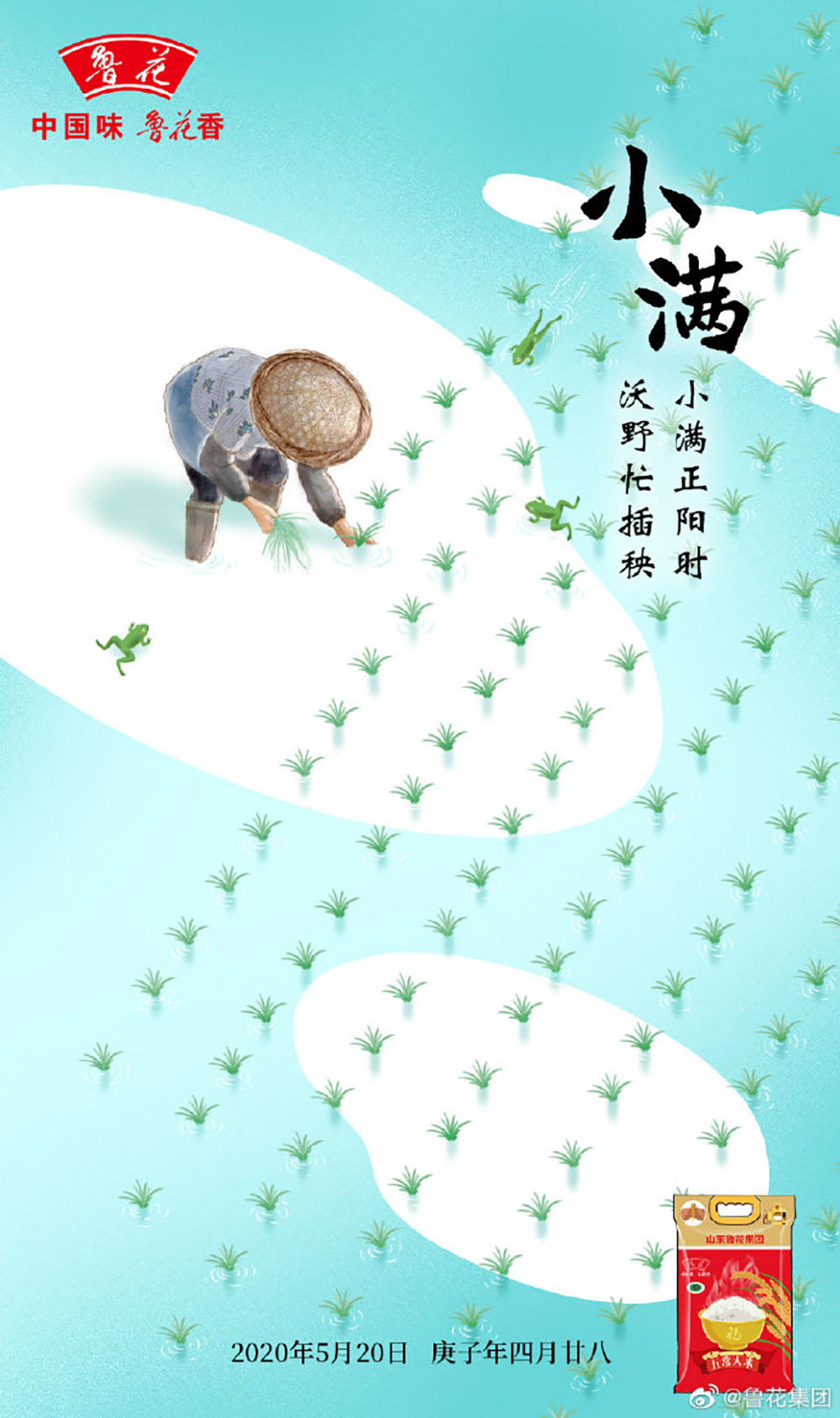 30张小满节气插画营销海报