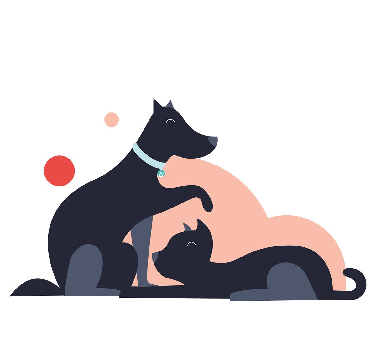 趣味插图!宠物保健产品品牌VI设计