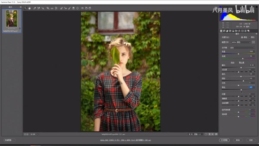 调色教程!如何让绿色调照片更耐看?