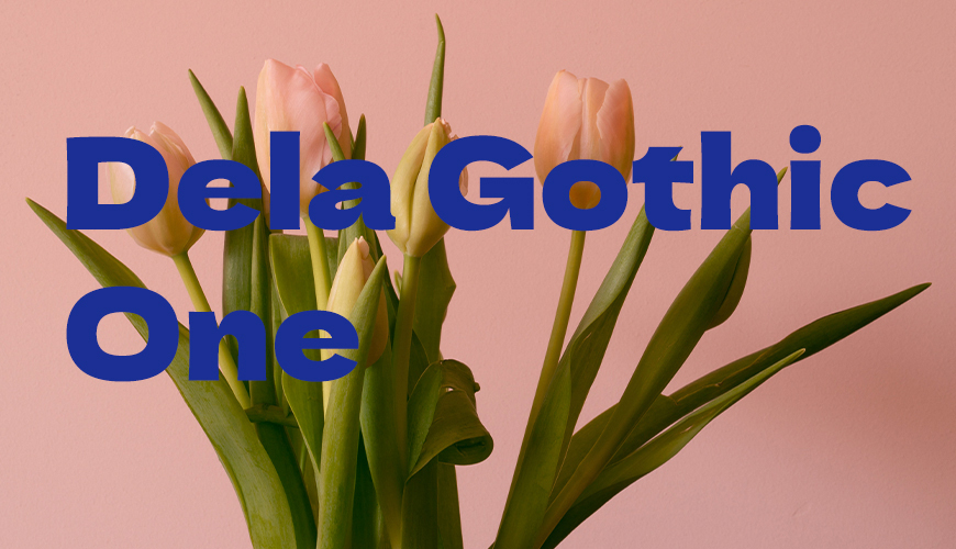 免费字体下载!一款力量感十足的哥特式日文字体—Dela Gothic One